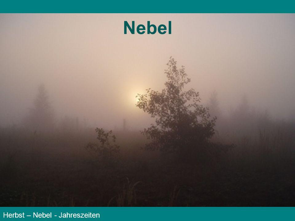 Nebel Herbst – Nebel - Jahreszeiten
