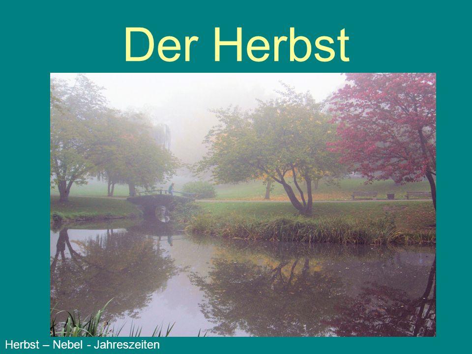 Der Herbst Herbst – Nebel - Jahreszeiten