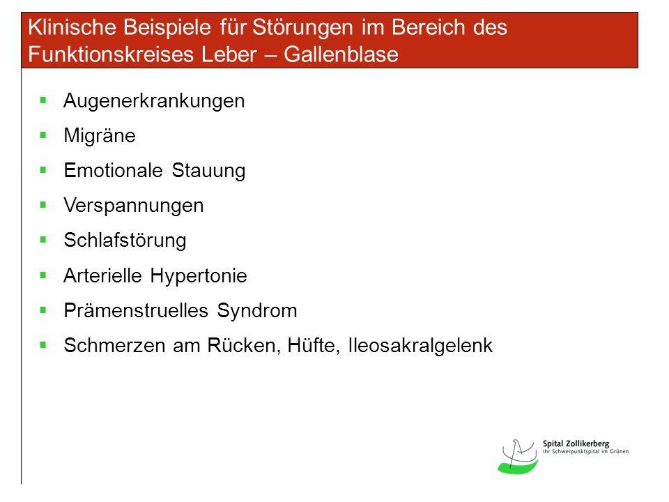 Klinische Beispiele für Störungen im Bereich des Funktionskreises Leber – Gallenblase