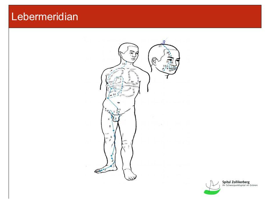 Lebermeridian