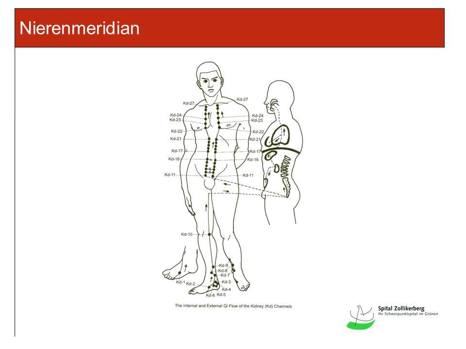 Nierenmeridian