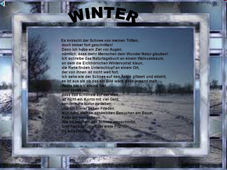 DER WINTER WINTER. Es knirscht der Schnee von meinen Tritten, doch immer fort geschritten! Denn ich habe ein Ziel vor Augen,