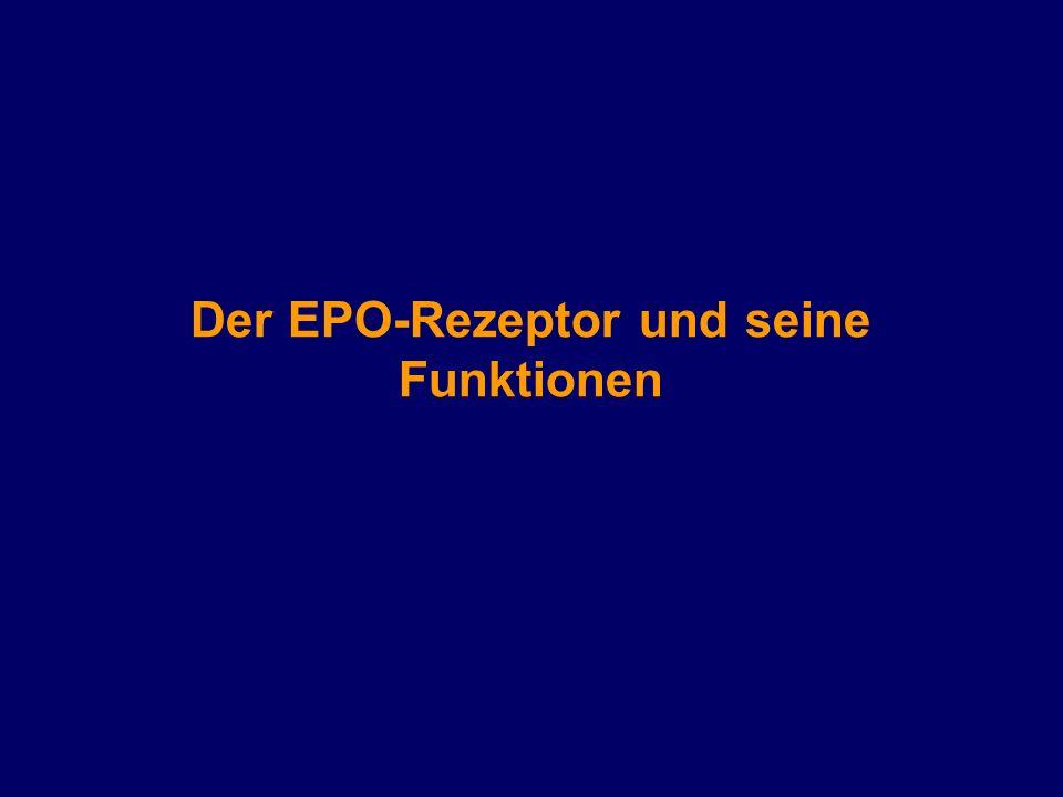 Großzügig Funktion Des Systems Pokrownym Galerie - Menschliche ...