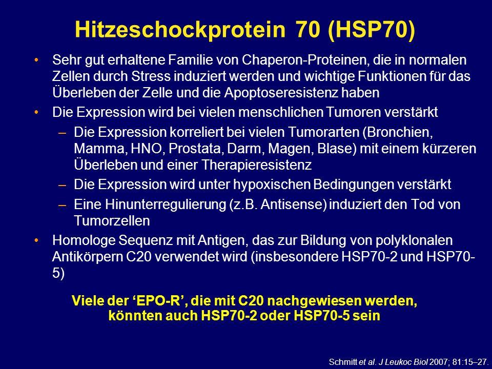 Hitzeschockprotein 70 (HSP70)