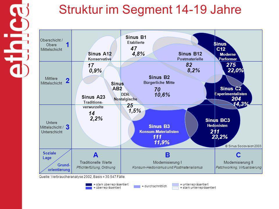 Struktur im Segment 14-19 Jahre
