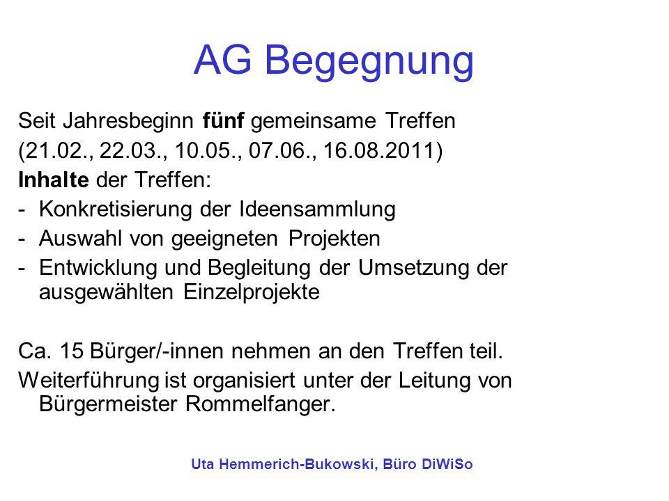 Uta Hemmerich-Bukowski, Büro DiWiSo