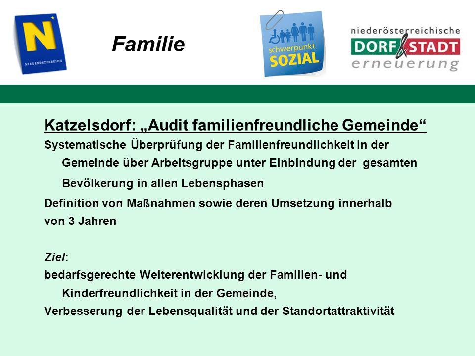 """Familie Katzelsdorf: """"Audit familienfreundliche Gemeinde"""