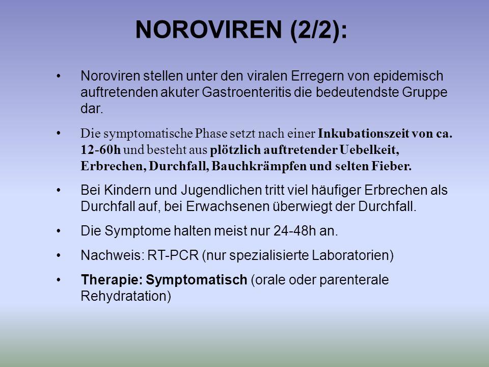NOROVIREN (2/2): Noroviren stellen unter den viralen Erregern von epidemisch auftretenden akuter Gastroenteritis die bedeutendste Gruppe dar.