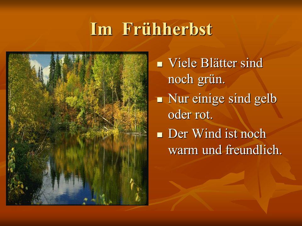 Im Frühherbst Viele Blätter sind noch grün.