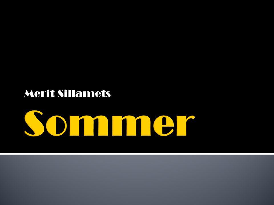 Merit Sillamets Sommer