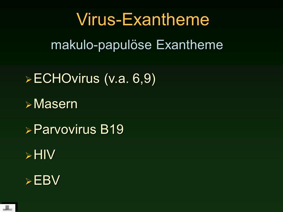 Virus-Exantheme makulo-papulöse Exantheme ECHOvirus (v.a. 6,9) Masern