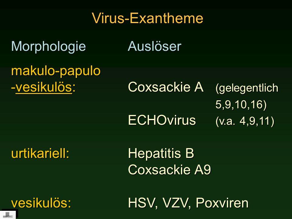 Virus-Exantheme Morphologie Auslöser