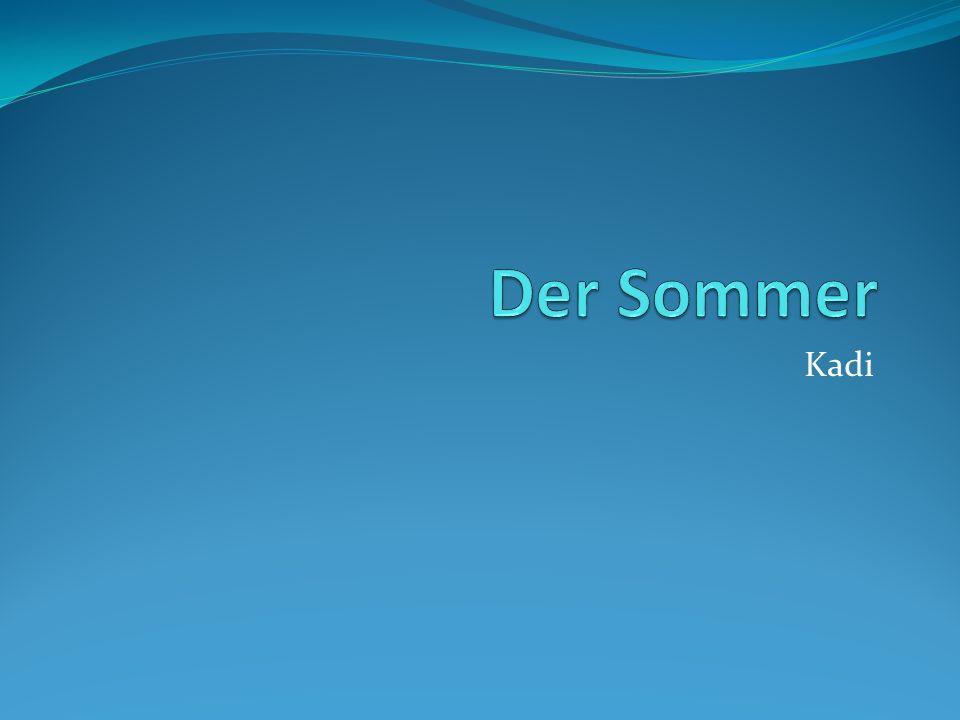 Der Sommer Kadi