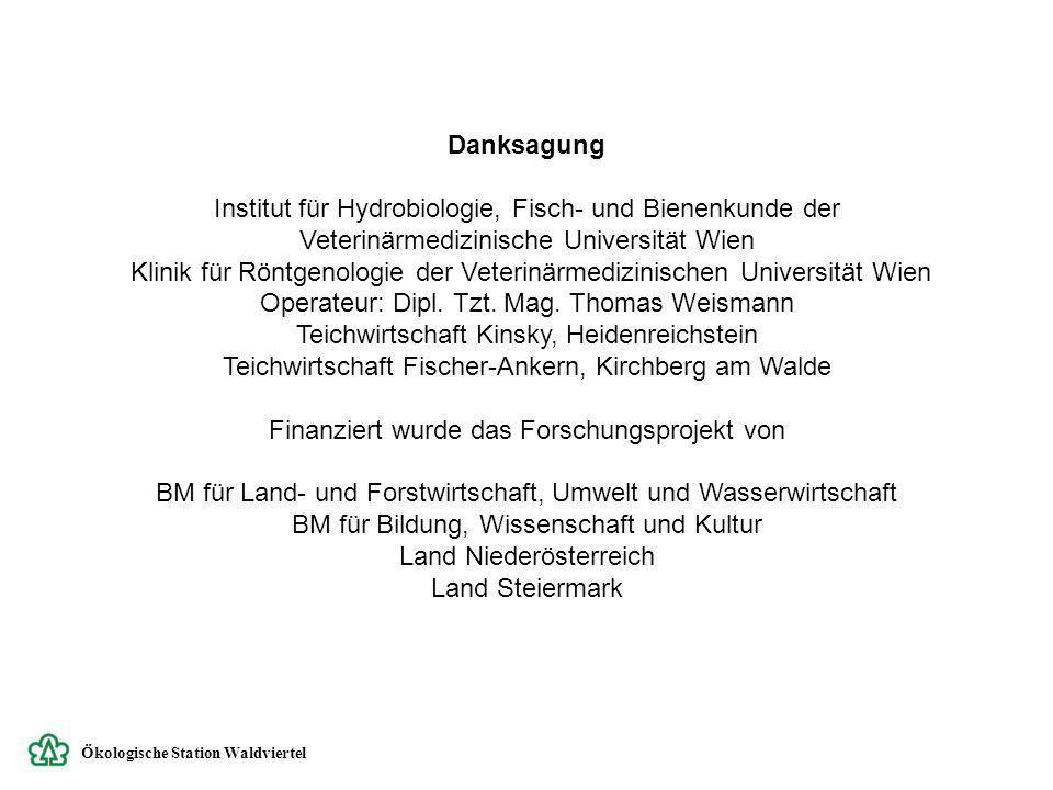 Teichwirtschaft Kinsky, Heidenreichstein