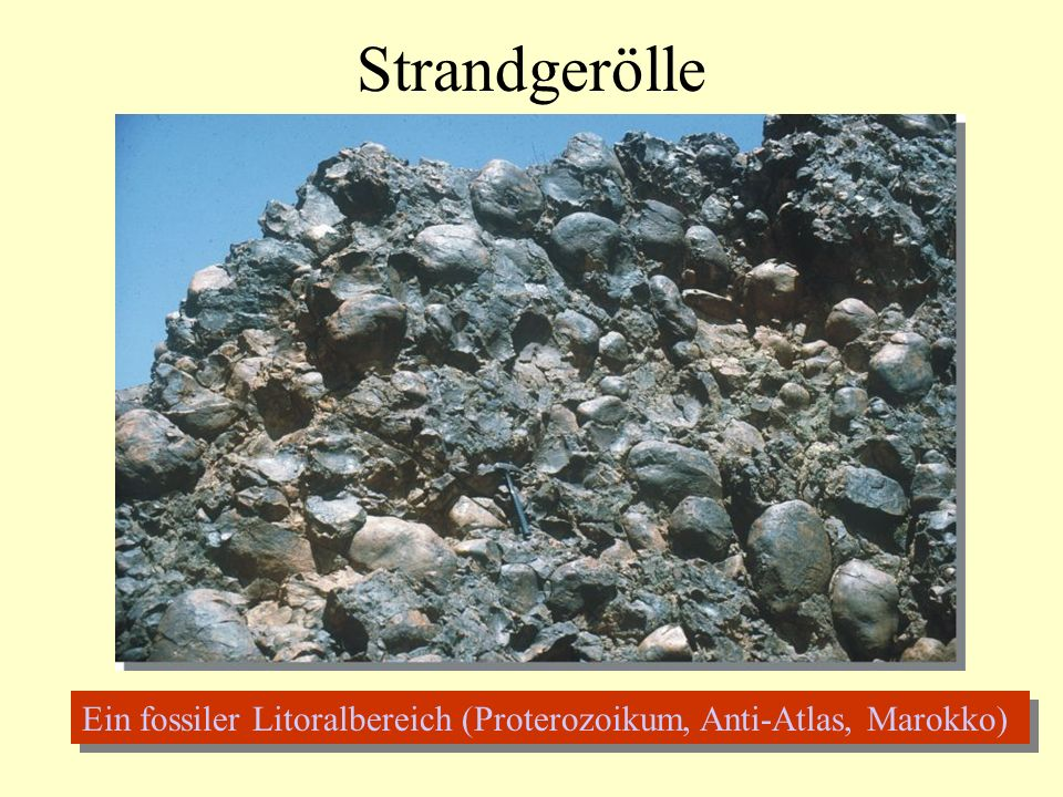 Strandgerölle Ein fossiler Litoralbereich (Proterozoikum, Anti-Atlas, Marokko)