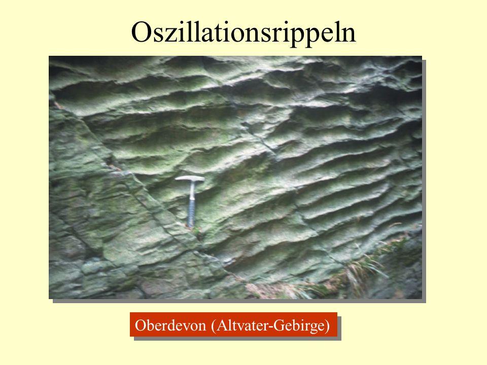 Oszillationsrippeln Oberdevon (Altvater-Gebirge)