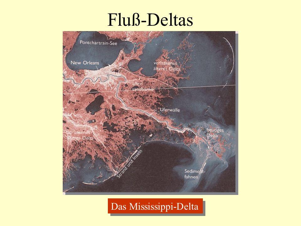 Fluß-Deltas Das Mississippi-Delta