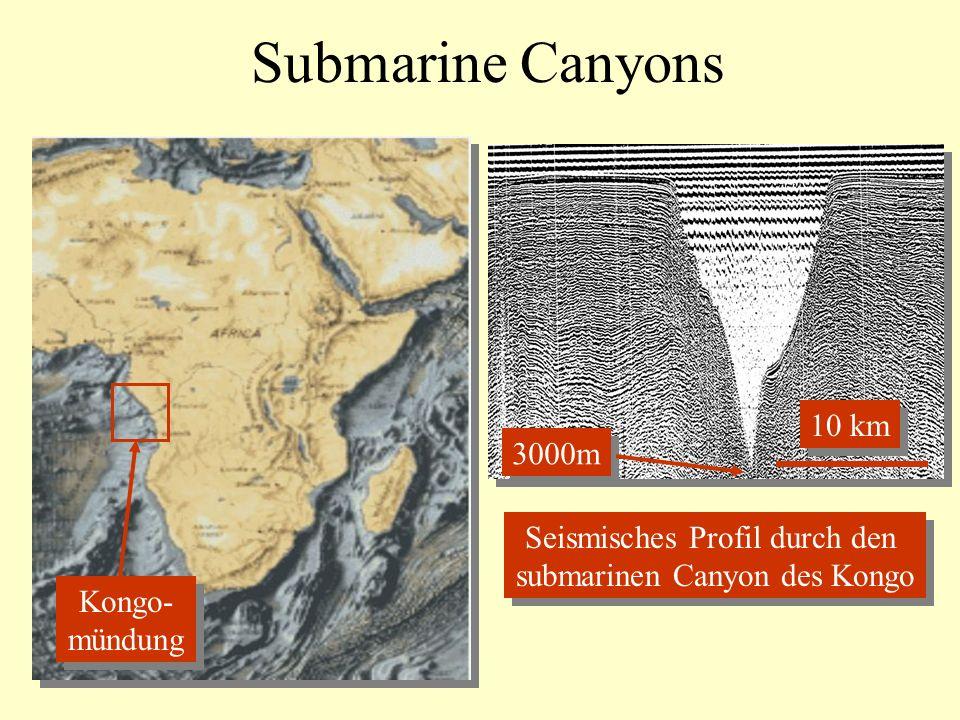 Submarine Canyons 10 km 3000m Seismisches Profil durch den