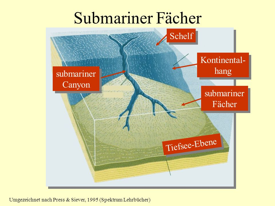 Submariner Fächer Schelf Kontinental- hang submariner Canyon