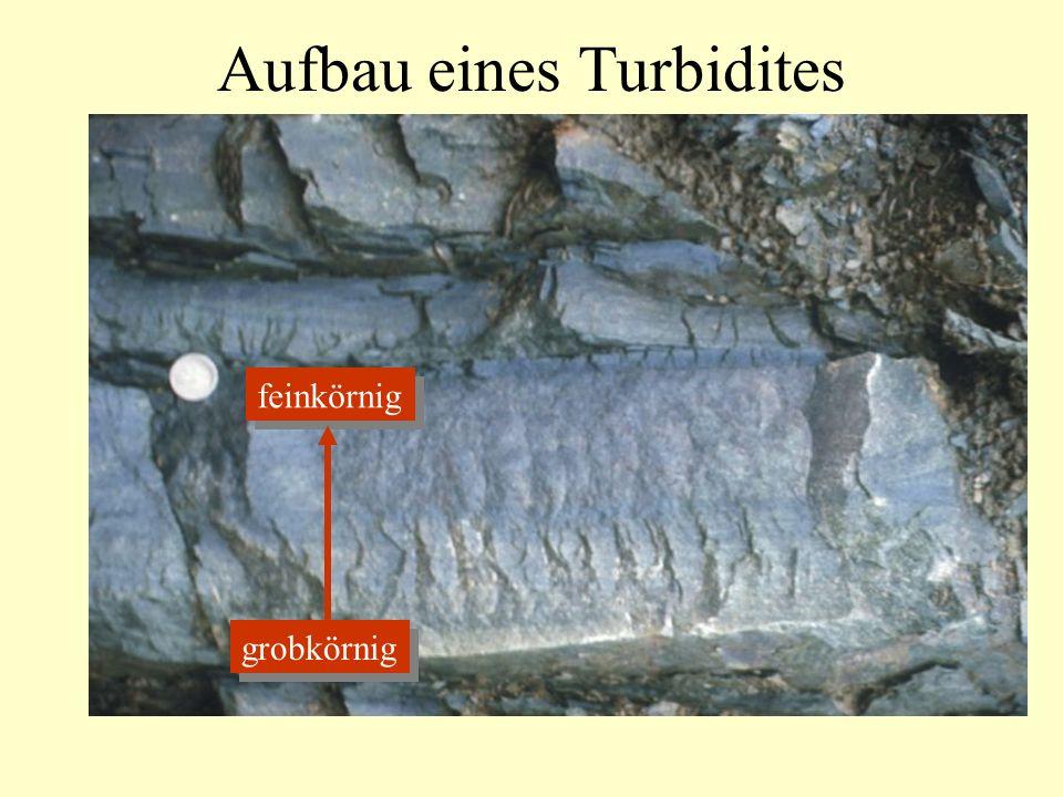 Aufbau eines Turbidites