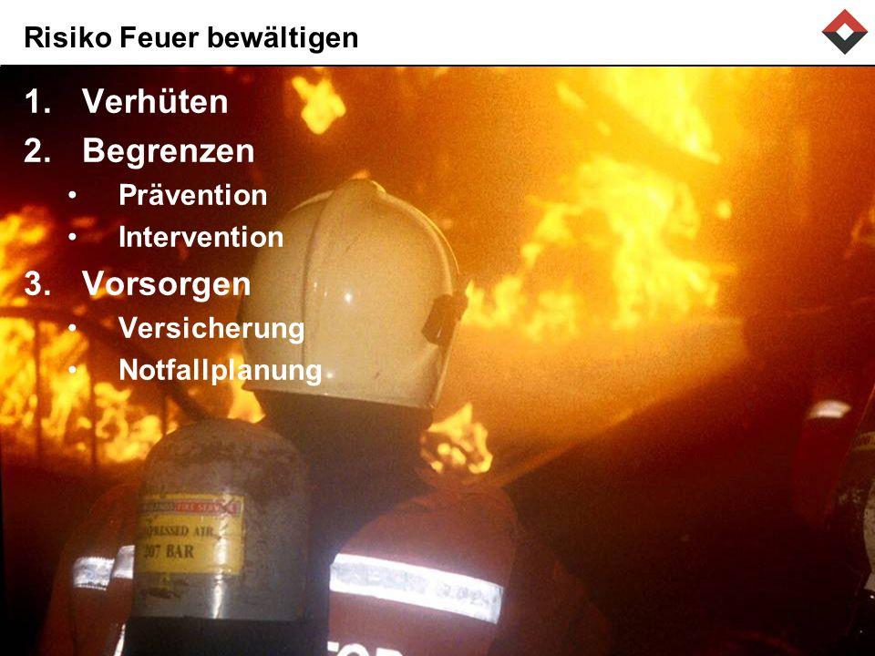Risiko Feuer bewältigen