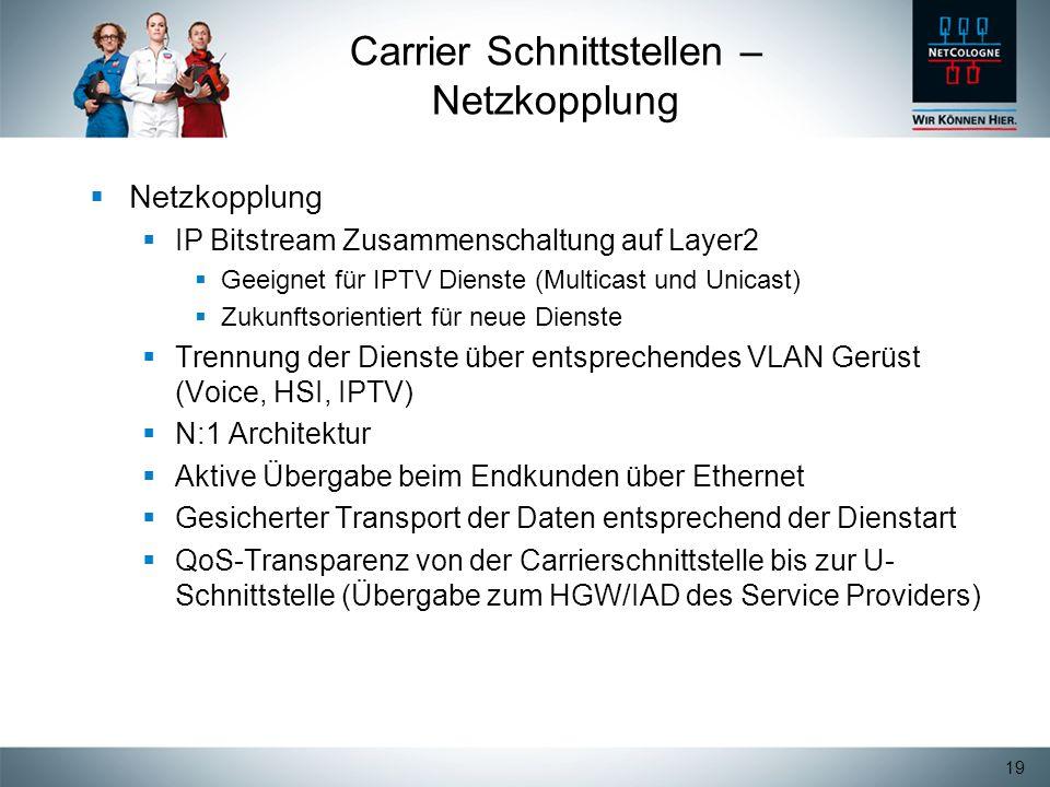 Carrier Schnittstellen – Netzkopplung