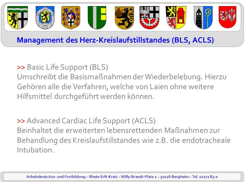 Management des Herz-Kreislaufstillstandes (BLS, ACLS)