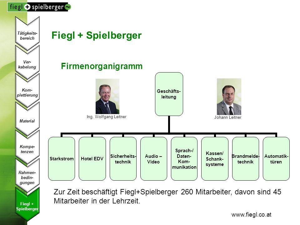 Fiegl + Spielberger Firmenorganigramm