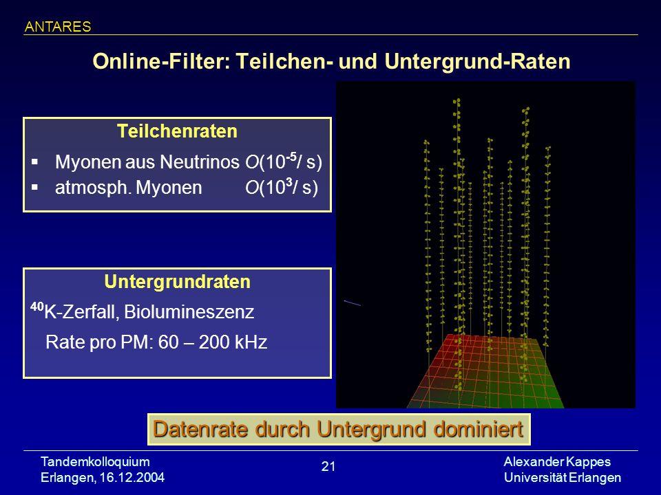 Online-Filter: Teilchen- und Untergrund-Raten