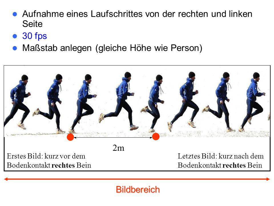 Aufnahme eines Laufschrittes von der rechten und linken Seite 30 fps