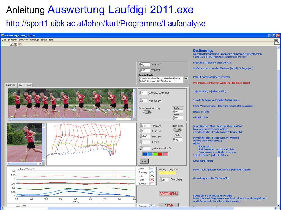 Anleitung Auswertung Laufdigi 2011.exe