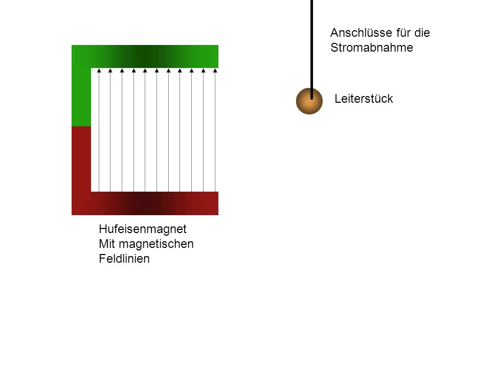 Anschlüsse für die Stromabnahme Leiterstück Hufeisenmagnet Mit magnetischen Feldlinien