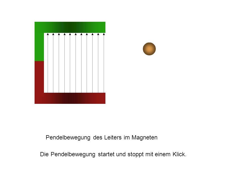Pendelbewegung des Leiters im Magneten