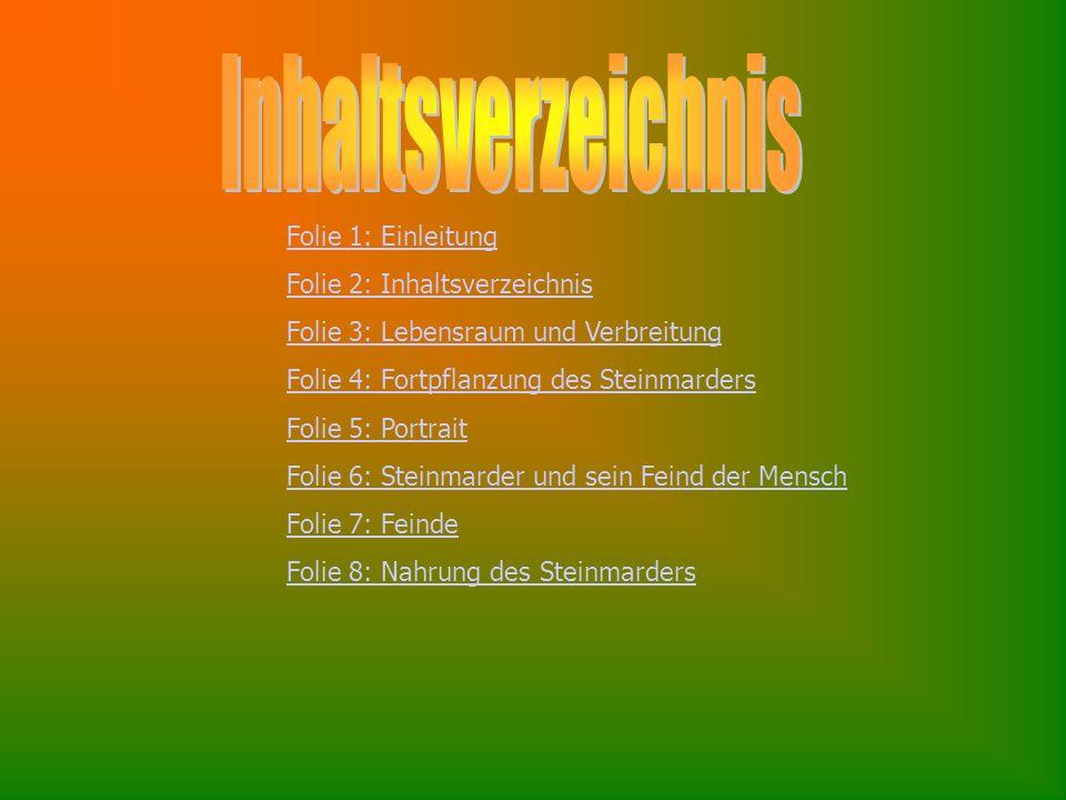 Inhaltsverzeichnis Folie 1: Einleitung Folie 2: Inhaltsverzeichnis