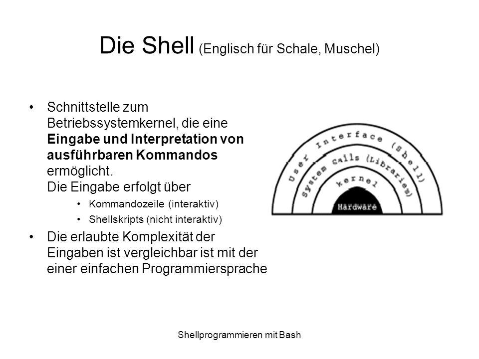 Die Shell (Englisch für Schale, Muschel)