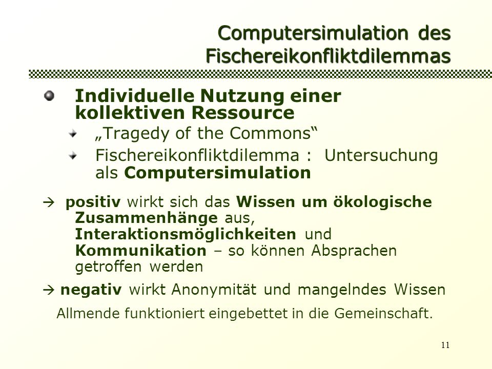 Computersimulation des Fischereikonfliktdilemmas