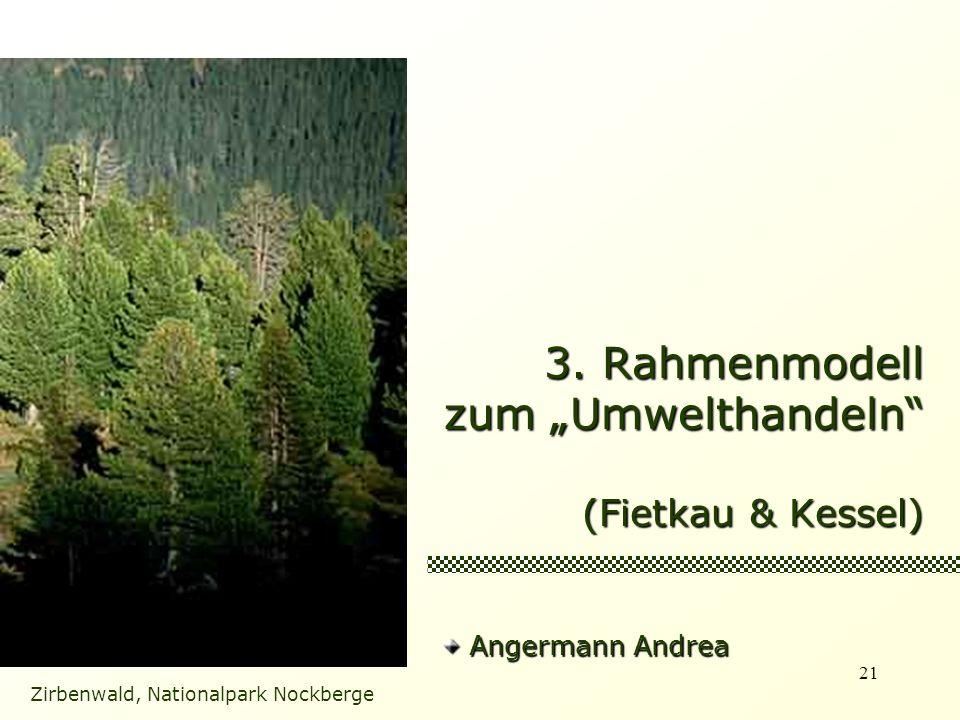 "3. Rahmenmodell zum ""Umwelthandeln (Fietkau & Kessel)"