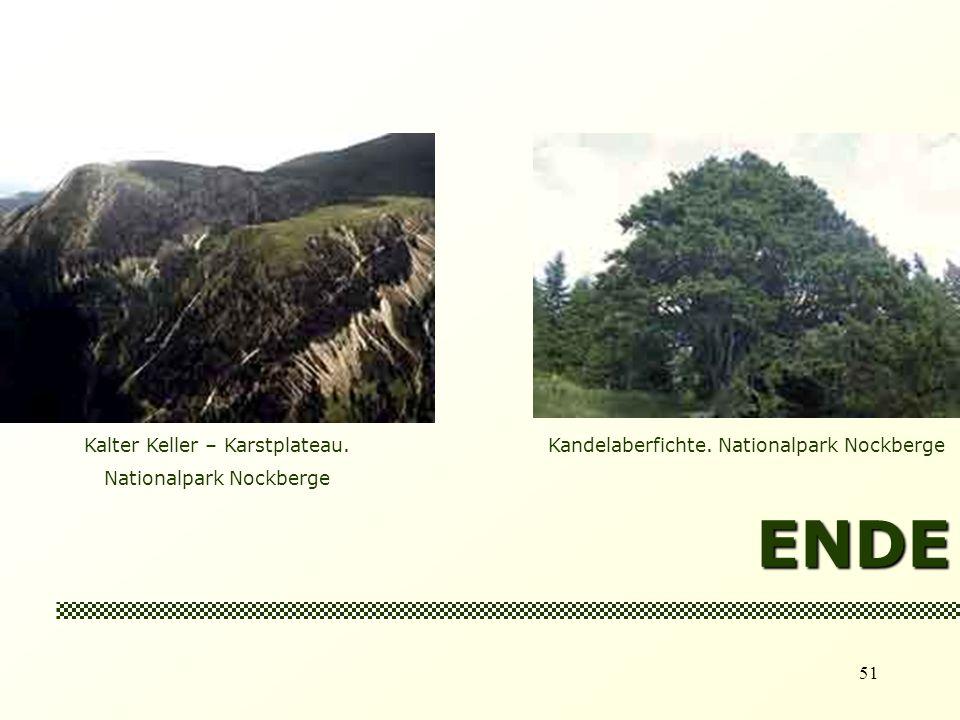 ENDE Kalter Keller – Karstplateau. Nationalpark Nockberge