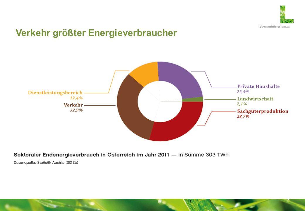 Verkehr größter Energieverbraucher