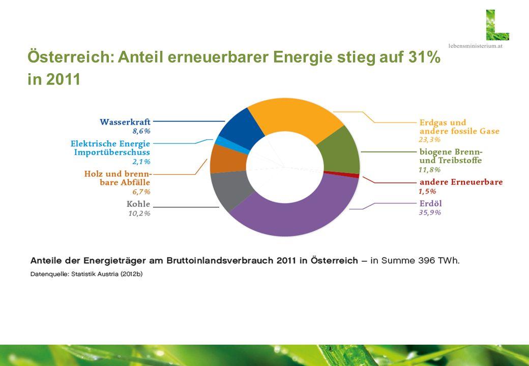 Österreich: Anteil erneuerbarer Energie stieg auf 31% in 2011