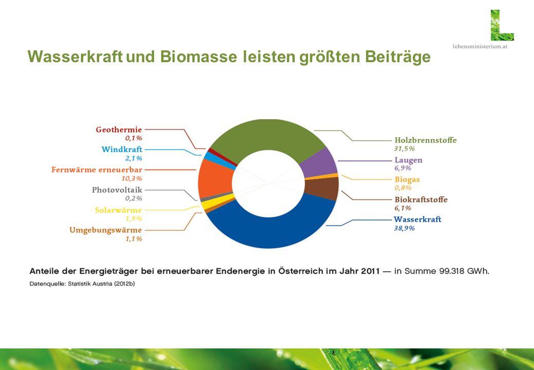 Wasserkraft und Biomasse leisten größten Beiträge