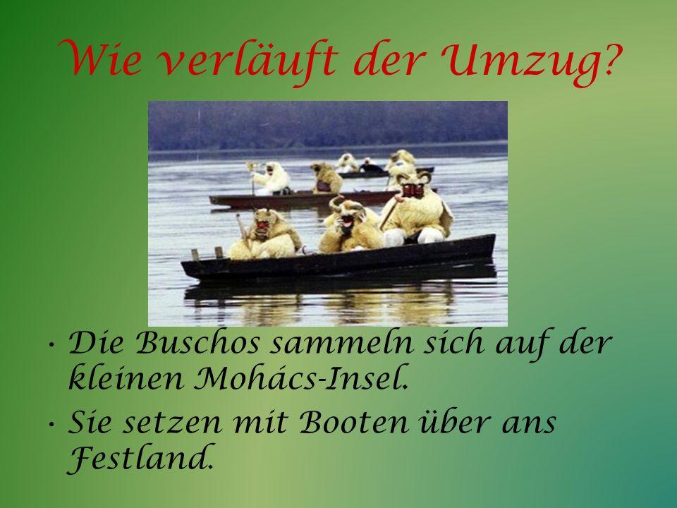 Wie verläuft der Umzug. Die Buschos sammeln sich auf der kleinen Mohács-Insel.