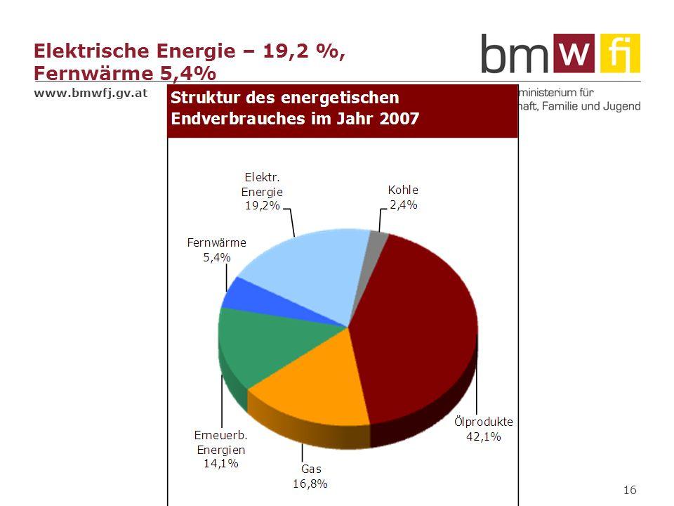 Elektrische Energie – 19,2 %, Fernwärme 5,4%