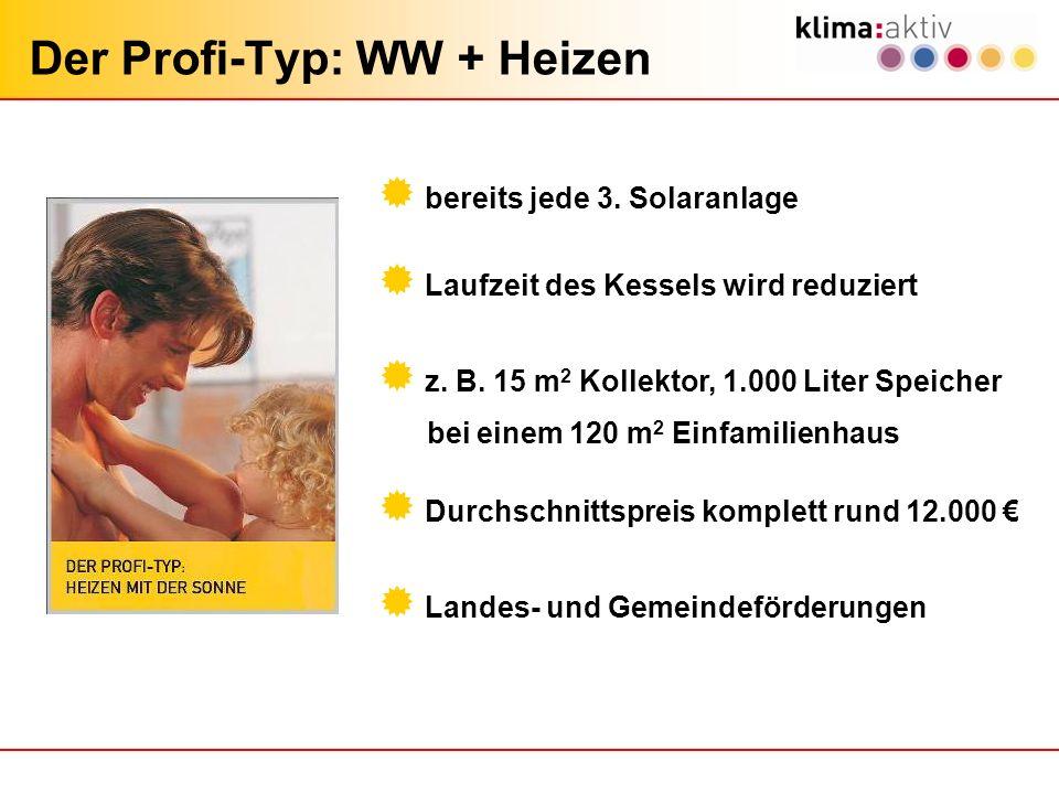 Der Profi-Typ: WW + Heizen