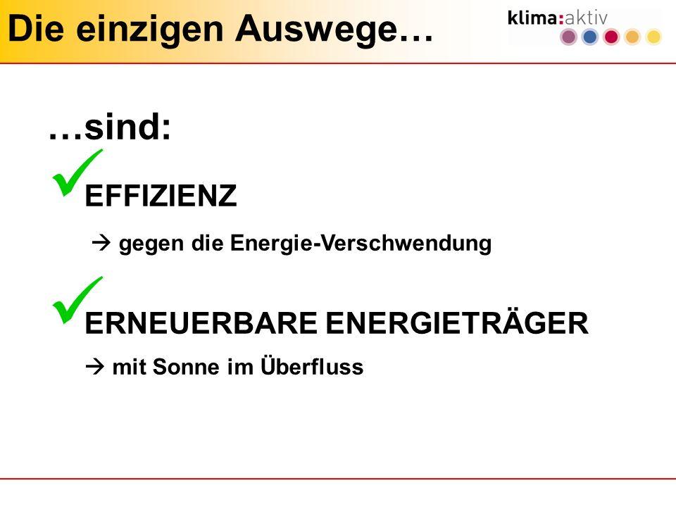 Die einzigen Auswege… …sind: EFFIZIENZ ERNEUERBARE ENERGIETRÄGER