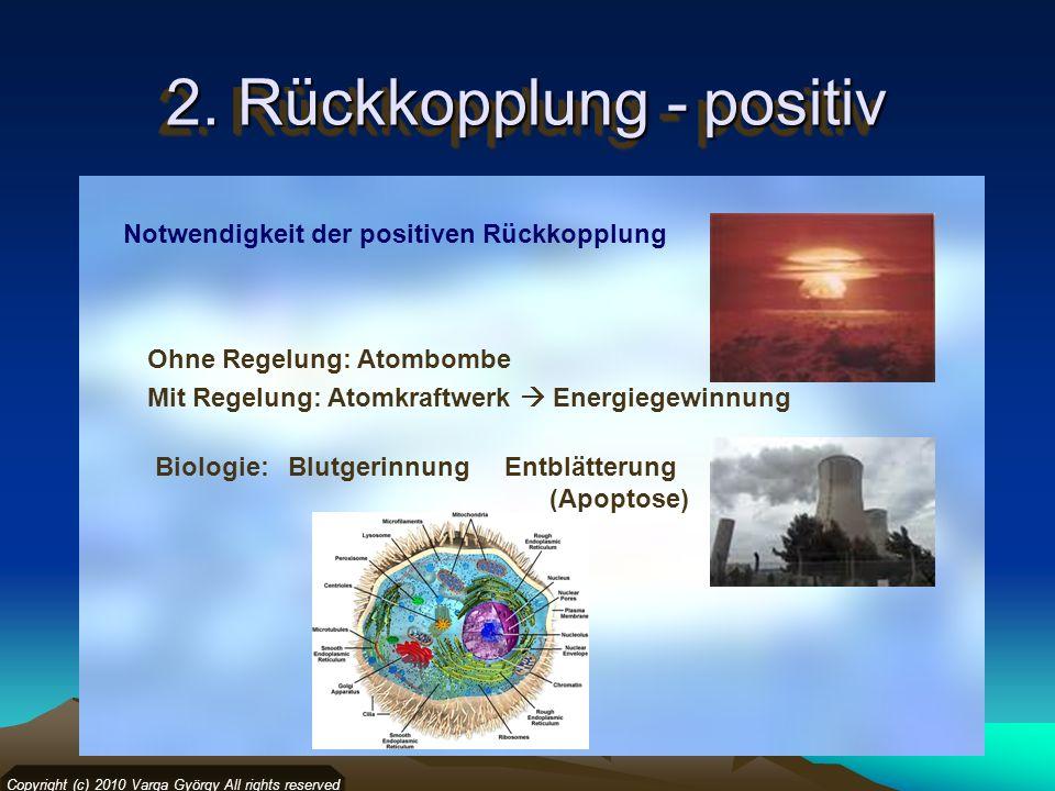 2. Rückkopplung - positiv
