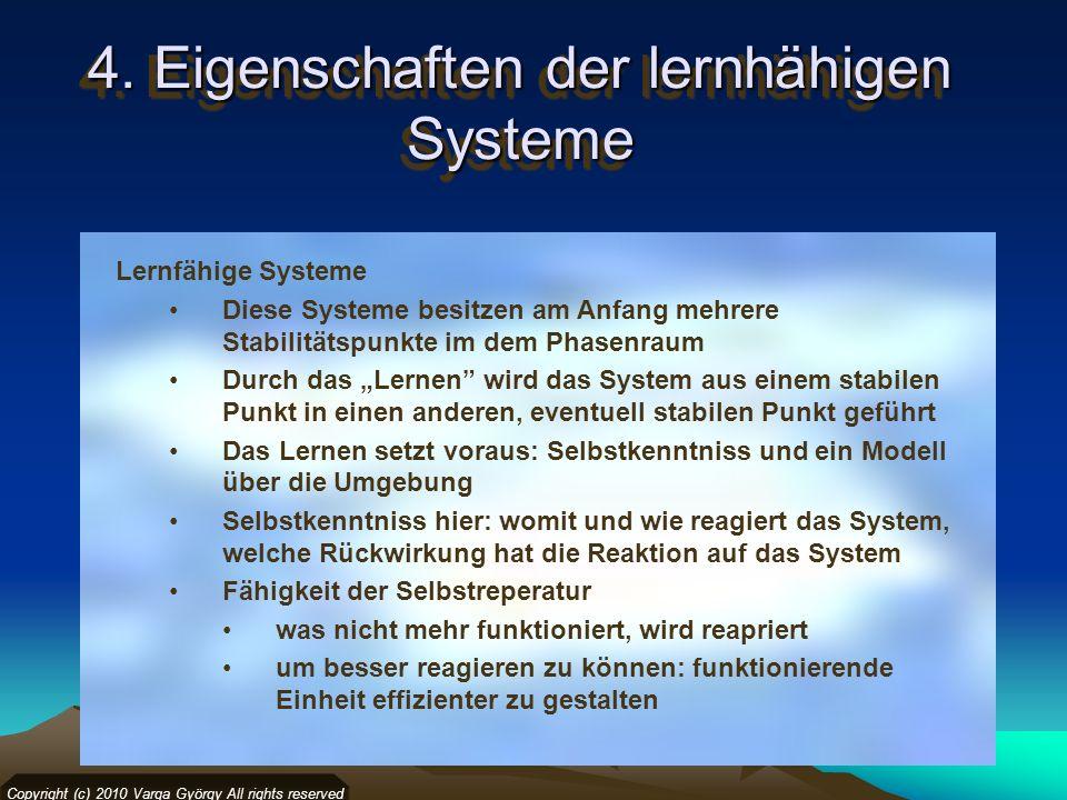 4. Eigenschaften der lernhähigen Systeme