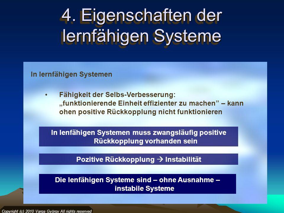4. Eigenschaften der lernfähigen Systeme