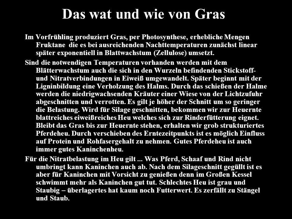 Das wat und wie von Gras