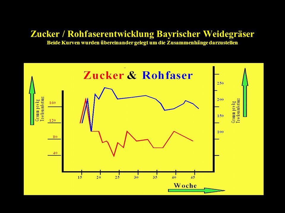 Zucker / Rohfaserentwicklung Bayrischer Weidegräser Beide Kurven wurden übereinander gelegt um die Zusammenhänge darzustellen